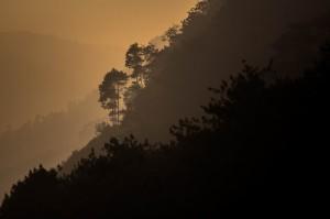 IMG_8618 Gunung Bukittunggul © 2014 Deni Sugandi
